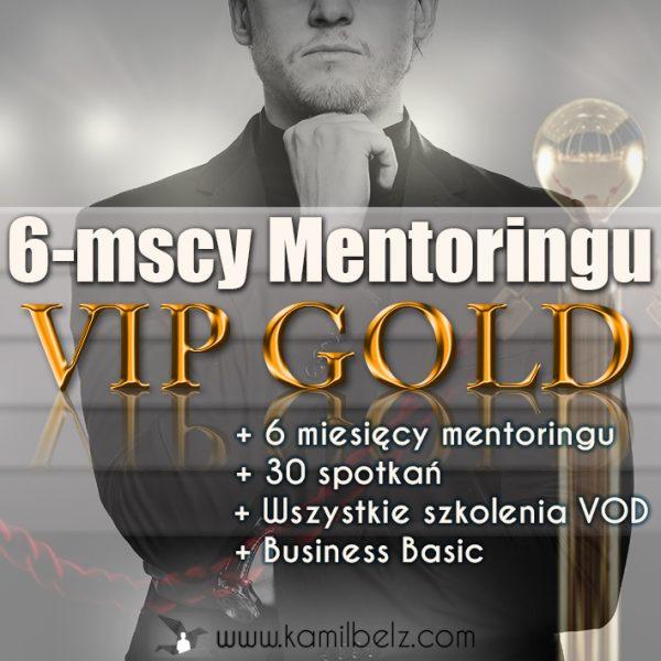 8. Mentoring VIP GOLD